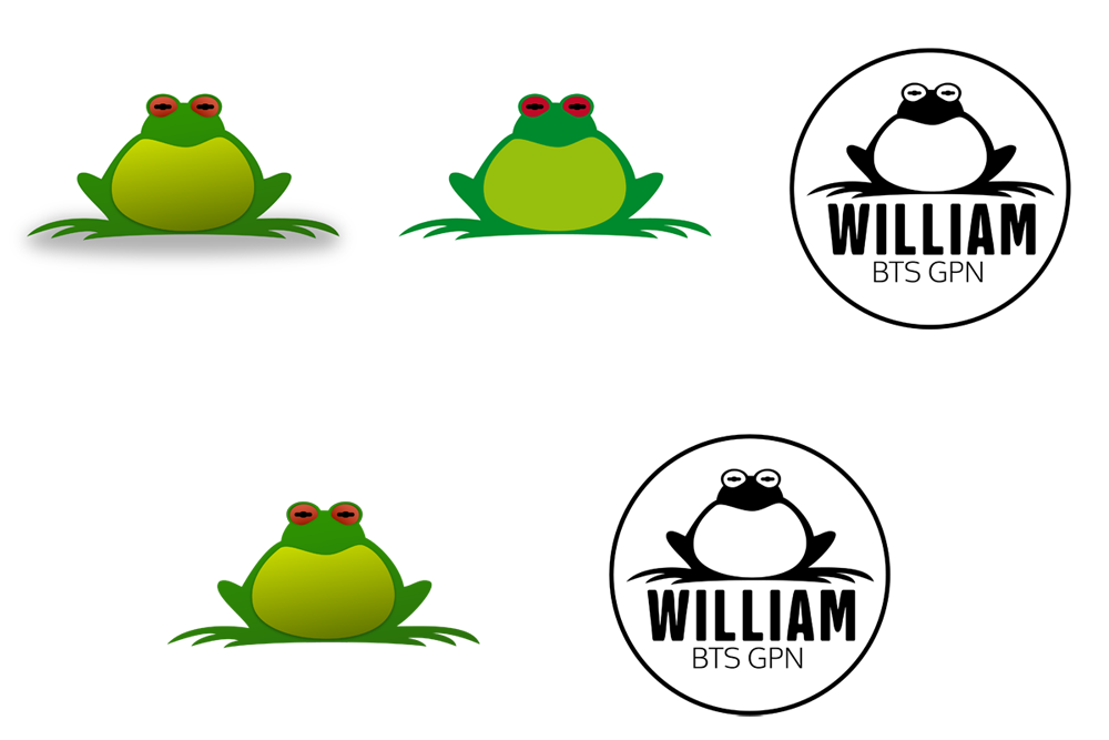 WilliamFrog-01.png