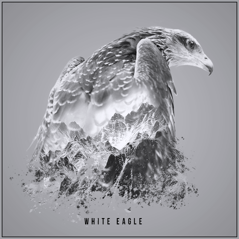 White_Eagle.png